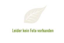 hofladen KarinsHofladen